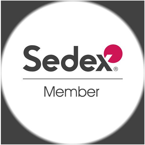 SGT Partners Logo